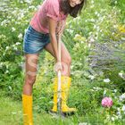 garden shed diy, garden shed organization, garden shed ideas Pinterest Account