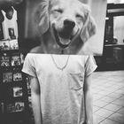 The Crazy Sander instagram Account