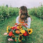 Miranda Luu Pinterest Account