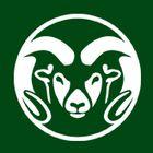 Colorado State University Pinterest Account