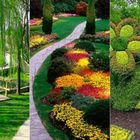 Botanischen Pinterest Account