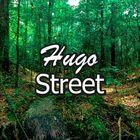 Hugo Wedding Link Pinterest Account