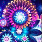 Laura Kennedy's Pinterest Account Avatar