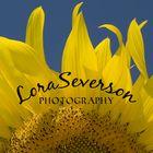 Lora Severson Photography's Pinterest Account Avatar