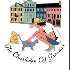 The Charleston Cat Groomer instagram Account