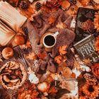 🧡Danielle🍁 instagram Account