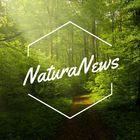 NaturaNews instagram Account
