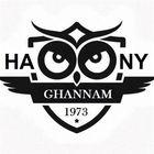 hany ghannam's Pinterest Account Avatar