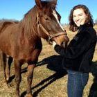 Johanna Cohoon Pinterest Account