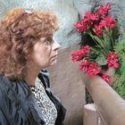 Susan Ingraham Pinterest Account
