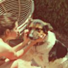 Diana Faaberg instagram Account