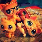 Lps jem Stone Fox Pinterest Account