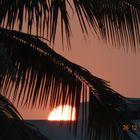 saumya gummadi Pinterest Account