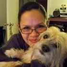 Cindy Torres Pinterest Account