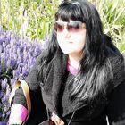 Cele Bradham Pinterest Account