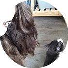Angela • Mawilo.fr Pinterest Account