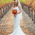 Hummingbird Wedding's Pinterest Account Avatar