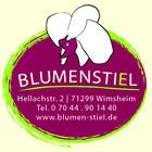 Blumenstiel Sina Bertsch Pinterest Account