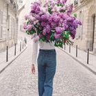 ~Blossom & Branch~       The English Garden               Company instagram Account