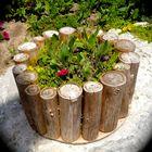 Herb garden Outdoor Pinterest Account