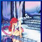 Silvara Wilde Pinterest Account
