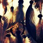 𝓔𝓻𝓲𝓴𝓪 Pinterest Account
