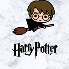 Muggle Land Pinterest Account