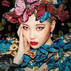 Akame Chan Pinterest Account