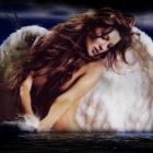Angel Wings Pinterest Account