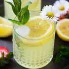 limoncello cocktails instagram Account