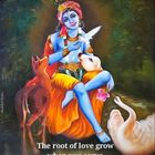 Madhavi Badri Pinterest Account
