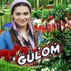 GüLom  instagram Account