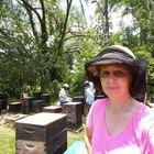 Butts Bees LLC & WonderBee Organics Pinterest Account