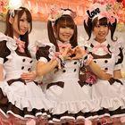 Japan Travel Blog Pinterest Account