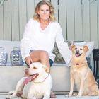Jill Shevlin Design Pinterest Account