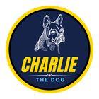CharlieTheDog's Pinterest Account Avatar