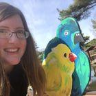 Sarah Valentine Pinterest Account
