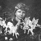 Enchanted Pinterest Account