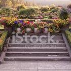 Greenhouse Garden Pinterest Account