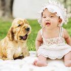 Cute Baby Humor's Pinterest Account Avatar