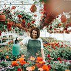 neva oral Pinterest Account