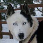 Laure Texier's profile picture