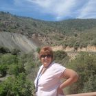Marsha Dial Pinterest Profile Picture