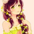 Lulu S. Starlight Pinterest Account