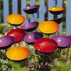 Garden Terrasse Pinterest Account
