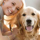Dog Advisor