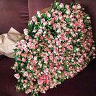 Valentina Surnina Pinterest Account