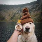 Fabi23Hm Pinterest Account