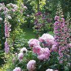 Blumen Garten instagram Account