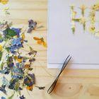 Atelier oce Pinterest Account
